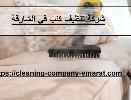 شركة تنظيف كنب في الشارقة |0543331609 | غسيل بالبخار